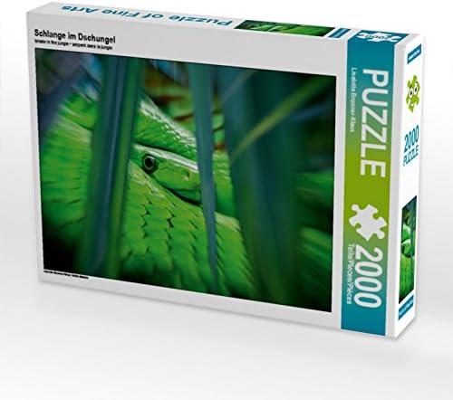 CALVENDO Puzzle Schlange im Dschungel 2000 Teile Lege-Grösse 90 x 67 cm Foto-Puzzle Bild Von Brunner-Klaus Liselotte | Fabrication Habile