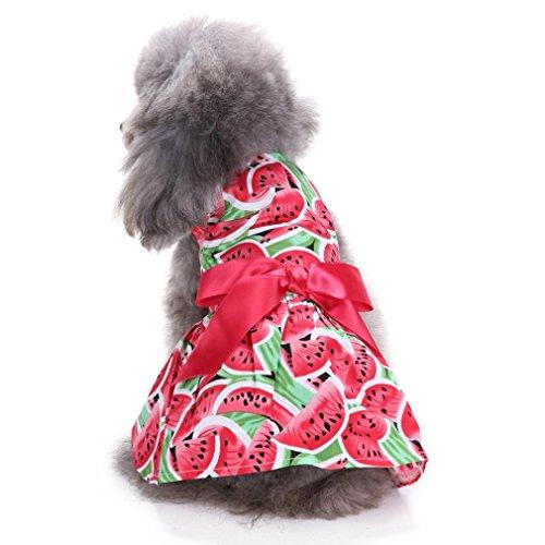 Coohole Puppy Hund Sweetie Wassermelone Floral Band Haustier Kleidung für Hunde Kleid Sundress Shirts, Rot, (Sweetie Kostüme)
