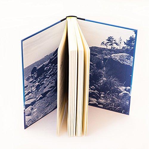 Das Sommerbuch: Alle Infos bei Amazon