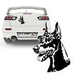 Dobermann Hundeaufkleber Sticker Wandtattoo Hund Autoheckscheiben Aufkleber |KB 299