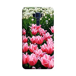 CaseLite Premium Printed Mobile Back Case Cover With Full protection For Asus Zenfone 3 ZE520KL (Designer Case)