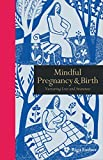 Mindful Pregnancy & Birth: Nurturing Love and Awareness (Mindfulness)