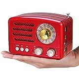 PRUNUS Radio a transistor ricaricabile Bluetooth in stile Classico Retro come il legno FM/AM(MW)/SW/SD/TF/USB/MP3/AUX con Altoparlanti, Finestra di sintonizzazione circolare di 270°