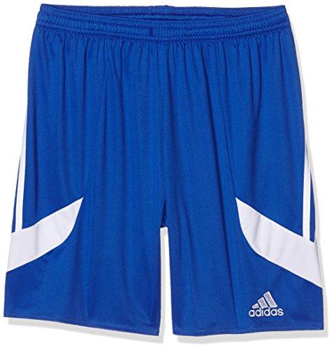 adidas Erwachsene Nova 14 Shorts Teamhose Nova 14 shorts, M, Blau (Cobalt/White/White) Cobalt Blue Plain