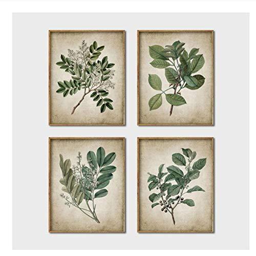xwwnzdq 4 STÜCKE Grüne Pflanze Wandkunst Drucke Retro Poster, Vintage Blätter Leinwand Malerei Druck Botanische Kunst Decor Wandbild Home Decoration Kein Rahmen -