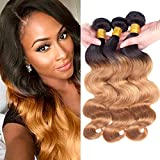 Dai Weier Echthaar Extensions Blond Brazilian 3 Packs Humain Hair Weave Ombre 1B 27 300g Echthaar Tressen Body Wave 20 22 24 Inches