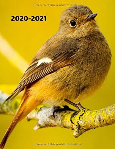 Wochenplaner 2020-2021: Vögel Tier-Liebhaber Motive | Vogelkunde Nesthocker Nestflüchter Platzhocker | A4+ Softcover 122 beschreibbare Seiten Wochenkalender Terminplaner | 22 x 28 cm (8,5x11 Zoll)