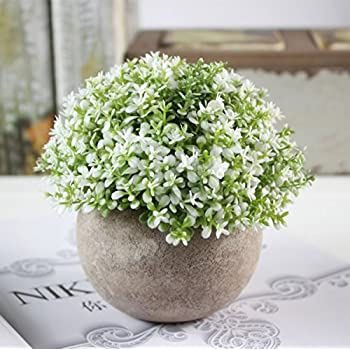YSBER Artificial Plants Imitation Plants Bouquet Fake Potted Plants Living  Room Bedroom Dining Room Coffee Shop Office Dresser Decor (Baby Tears White) Part 82