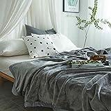 Kuscheldecke 150x200 cm Uni Grau Flauschige Fleece Decke für 4 Jahreszeiten, Flanell Sofadecke, Super Weiche Mikrofaser Tagesdecke Schlafdecke, Überwurf (150 x 200 cm, grau)