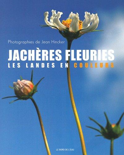 Jachères fleuries : Les Landes en couleurs