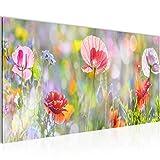 Bilder Blumen Mohnblume Wandbild Vlies - Leinwand Bild XXL Format Wandbilder Wohnzimmer Wohnung Deko Kunstdrucke Pink 1 Teilig -100% MADE IN GERMANY - Fertig zum Aufhängen 007512a