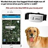 Tkstar Mini-GPS-Tracker für kleine Hunde oder Katzen, inklusive Halsband und Online-Tracking - 3