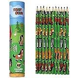 Pony Club Bleistifte in Tube. Enthält 12 Buntstifte