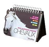 mon calendrier passion chevaux