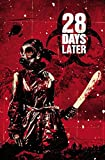 28 DAYS LATER TP VOL 04 GANGWAR by Alejandro Aragon (Artist), Michael Alan Nelson (24-May-2011) Paperback