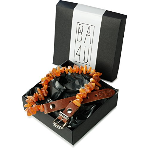 ★ BA4U Bernstein Halsband mit Lederschließe LC40 ★ 41 - 45 cm BA4U Bernsteinkette für Hunde und Katzen ★ Zeckenhalsband ★ Zeckenschutz ★ 100{8be4e2bfa735d5b426c8b063e204496cfc74edcb4f77c0d2e92621c77c8e5858} authentisches und natürliches Produkt ★