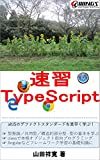 Quick Master TypeScript Sokushu (Japanese Edition)