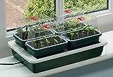 Seedeo Mini-pépinière chauffée avec 4 petites serres + 2 litres de terreau + 2 échantillons de graines
