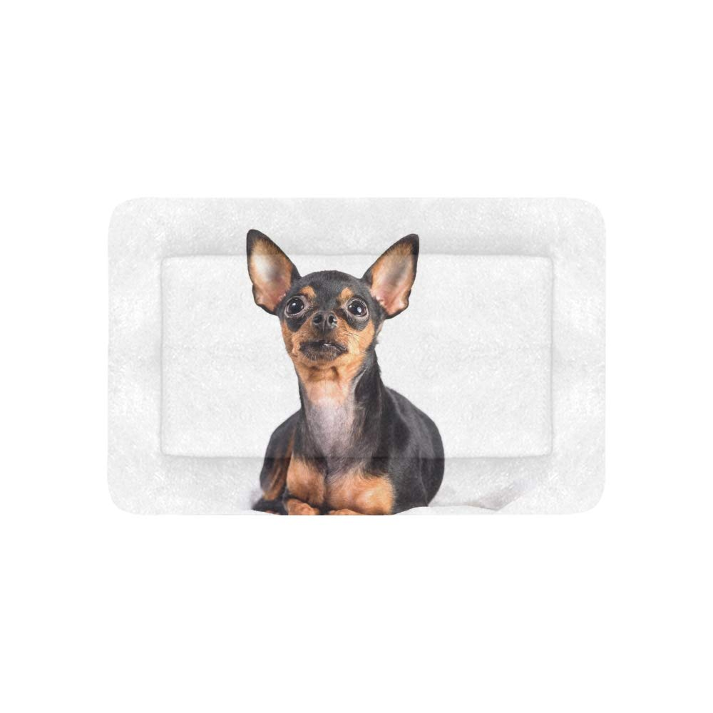 Enhusk Russian Toy Terrier Puppy Extra Large Bedding Soft Pet Dog Beds Couch For Puppy And Cats Furniture Mat Cave Pad…