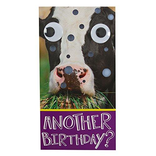 hallmark-birthday-humour-3d-googly-eyes-card-medium-slim