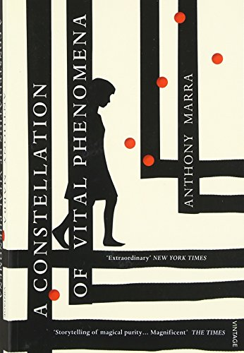 A Constellation of Vital Phenomena (Vintage Books)