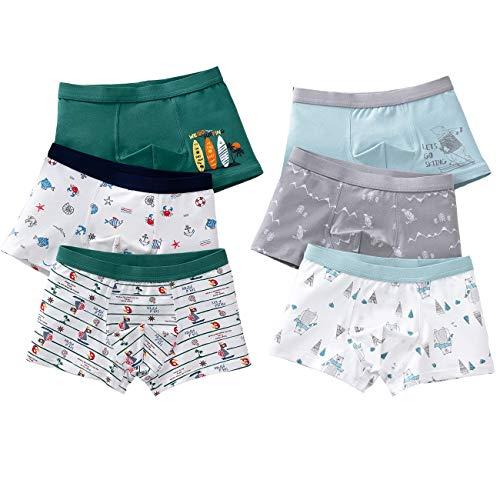 LeQeZe 6 Pack Kinder Jungen Boxershorts Unterwäsche Slips Junge Boxer Unterhose Baumwolle Schlüpfer 2-11 Jahre Größe 86-146 (Jungen Unterhose 6 Pack/05, 2-3Jahre)