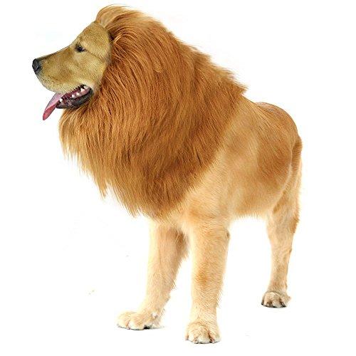 Natural Home Hundekostüm Löwenmähne für Hunde -