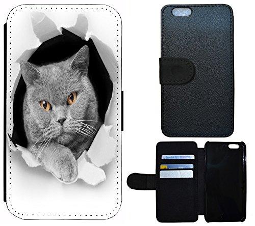 Schutz Hülle Flip Cover Handy Tasche Etui Case für (Apple iPhone 4 / 4s, 1109 Elfe Cartoon Anime Rosa Blau) 1104 Katze Kater Schwarz grau Weiß