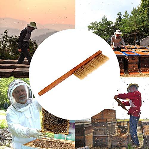Preisvergleich Produktbild 1 STÜCK Imkerei Werkzeuge Gelb Holz Bee Sweep Pinsel Schweinsborsten Bienenbürsten Natürliche Borstenbürste für Imker Ausrüstung