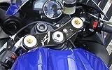 ADESIVO 3D compatibile per MOTO R 1 PROTEZIONE PIASTRA FORCELLA YAMAHA R1 07-08