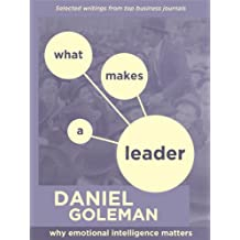 WHAT MAKES A LEADER: WHY EMOTIONAL INTELLIGENCE MATTERS (English Edition)
