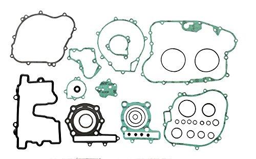 Athena P400250850253 Dichtungssatz Motor