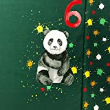 Glünz - Stoff - Jersey Geburtstags Panel Panda 6 - Panel -