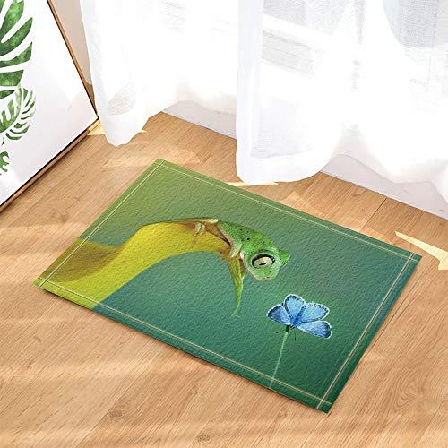 fdswdfg221 Suchen Tiere Freundschaft Dekor Frosch auf Blumen am Blue Butterfly Bad Teppiche Griffige Fußmatte Boden Einfahrten Innenvorder Fußmatte Kinder Badmatte Bad-Accessoires