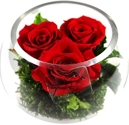 Rosen-te-amo Red Roses Arrangement - Naturally Preserved Rose Real Flowers In Glass Vase - No Water Required - Real Roses - Will Last For Many Years - Everlasting (Red Rose)