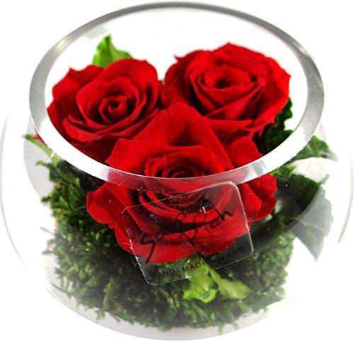 1Composizione floreale in vera konservierte fiori almeno 3anni con 3rose rosse e un po 'Rilegatura verde-dimensioni: altezza ca. 10cm-diametro 10cm