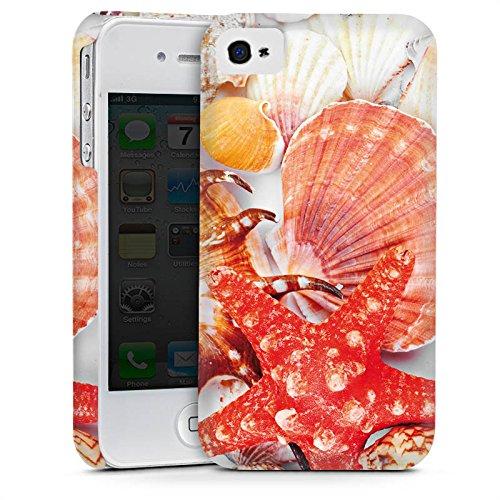 Apple iPhone 4 Housse Étui Silicone Coque Protection Coquillages Moules Étoile de mer Plage Cas Premium mat
