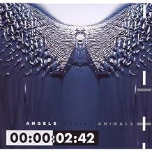 Angels Versus Animals [Import allemand]