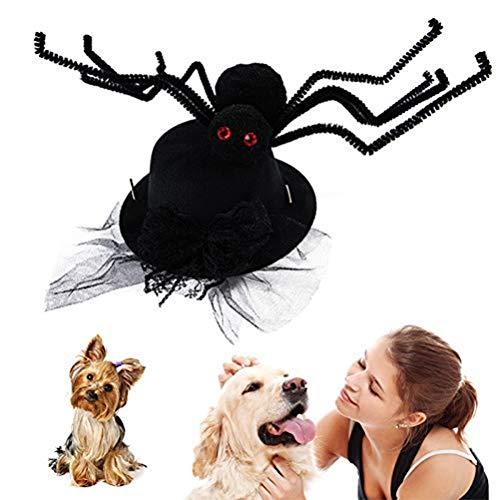 Kostüm Dog Spider Black - EqWong Halloween Lustiges Haustier Kostüm, Haustier Spitze Spinne Deckel Hund Scherz Katze Zubehör schwarz Spinnen Strang Gruselreppe Horror Party Bösewicht Haustier Kostüm Zubeh