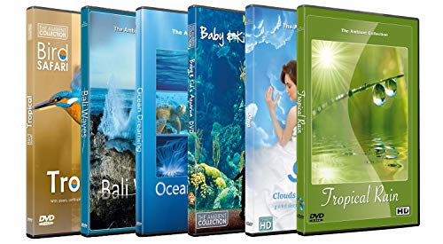 6 Disc Set Sleep Time DVD Combo ...