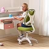 PC CHAIR Verstellbar Kinder Schreibtischstuhl Lws- Gaming Stuhl Kinderstuhl-Studie Bürostuhl schreibtischstuhl-C