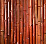Spessore rosso rotolo di canne di bambù 1,9 m rotoli 1,8 m alta
