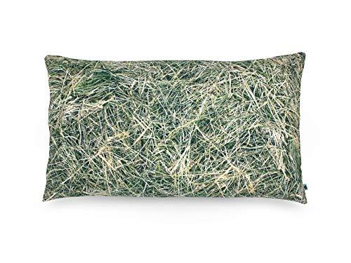 FOONKA - Cojín de Trigo sarraceno, 50 x 30 cm, Relleno de Trigo sarraceno, algodón, Color Gris y Verde...