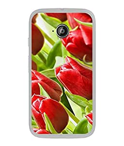 FUSON Designer Back Case Cover for Motorola Moto E :: Motorola Moto E XT1021 :: Motorola Moto E Dual SIM :: Motorola Moto E Dual SIM XT1022 :: Motorola Moto E Dual TV XT1025 (Close Up Red Roses Chocolate Hearts For Valentines Day)