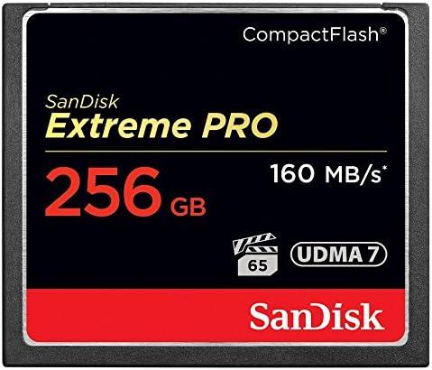SanDisk 256 GB s CompactFlash Card