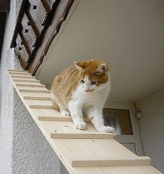 Elmato Cat escaliers, 4m