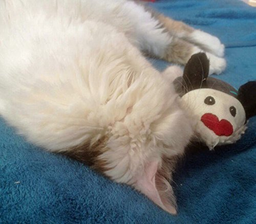 LunaChild giocattolo del mouse WISH NAME giocattolo del gatto nome valriano sonaglio gatto grigio