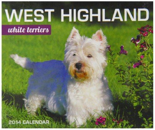 West Highland White Terriers Box (Calendar 2014) -