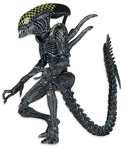 "Figura de Acción Alien vs. Predator Serie 7 AVP ""Grid Alien"" 1"