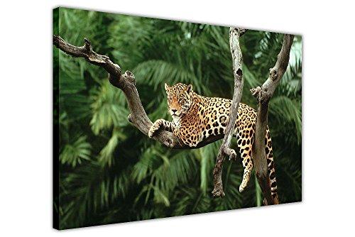 auf Baum Leinwand Wall Art Nature Prints Raum Dekoration Tier Bilder Home Art Fotos ()